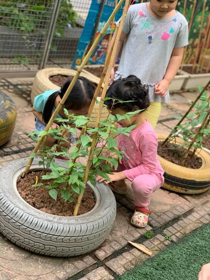 Trường mầm non Sky Kids - Minh Khai Hai Bà Trưng