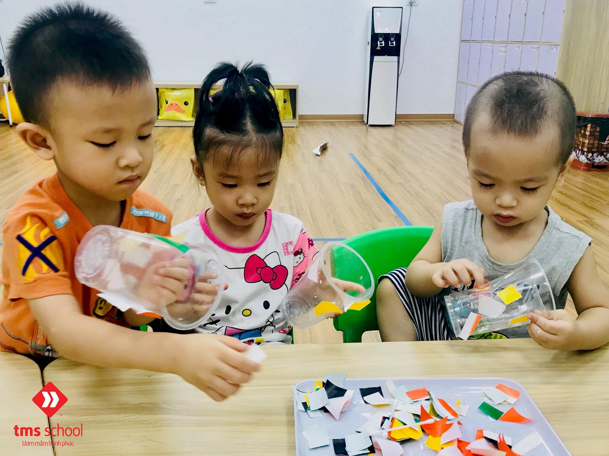 Trường mầm non TMS (TMS School) - Tố Hữu