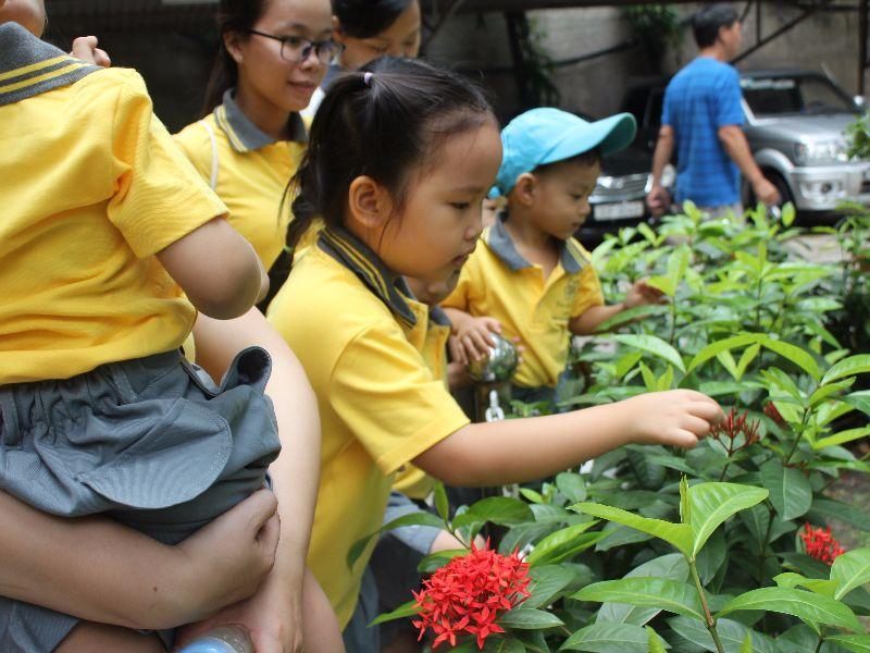 Trường mầm non Tomorrowland - Tân Phú