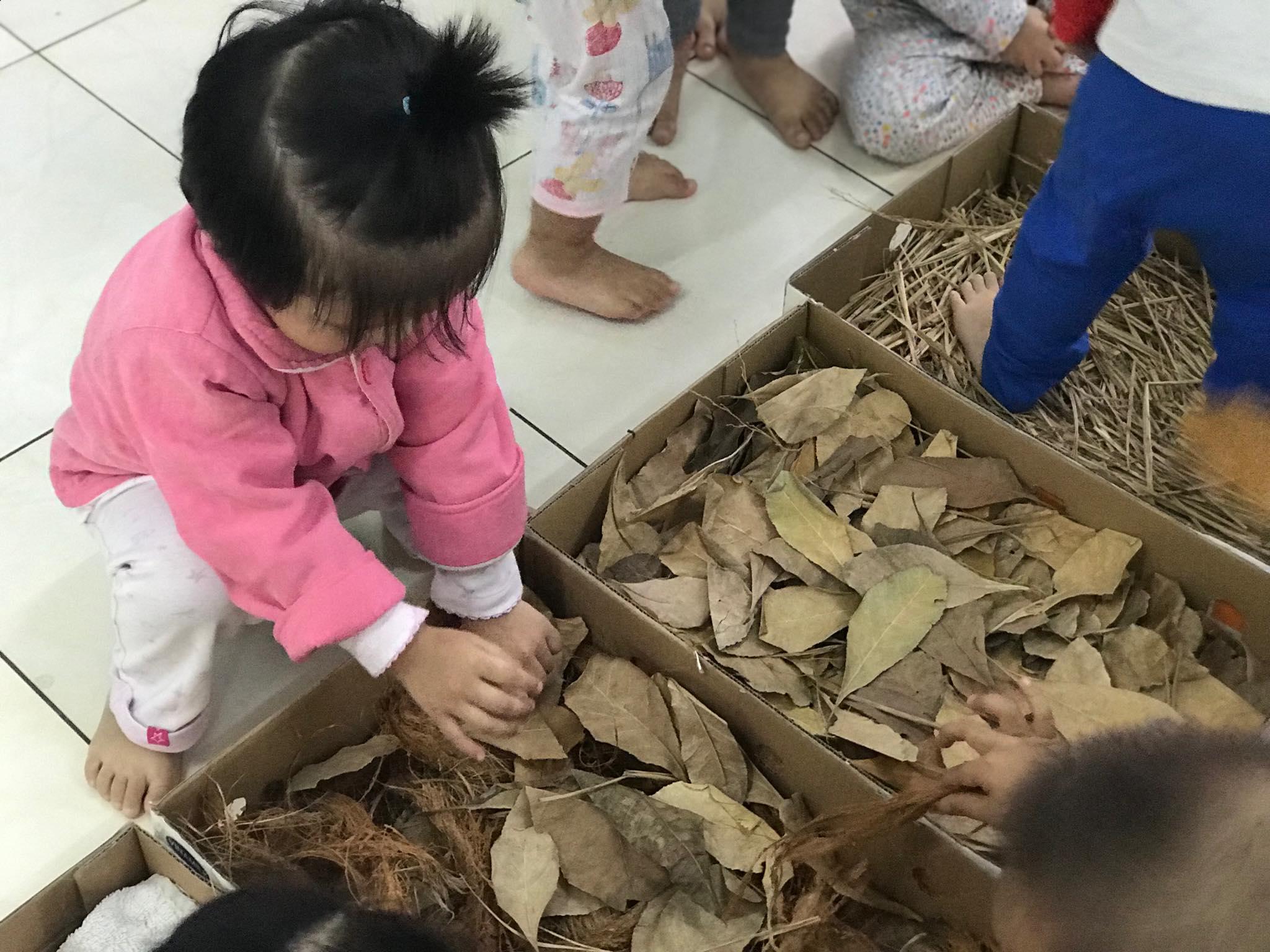Trường mầm non tư thục Hoa Hồng - Bồ Đề