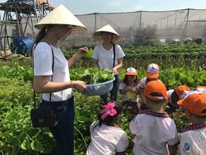 Trường mầm non Việt Hoa - Phường 9