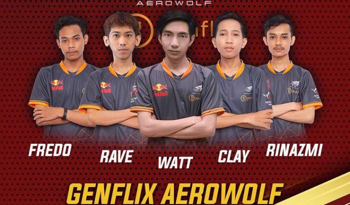 Aerowolf Organizer