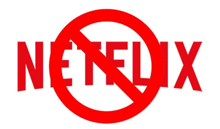 Netflix telah dilarang di beberapa negara khususnya yang melarang film-film dewasa.