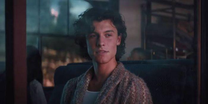 Sinopsis dann Review Film Shawn Mendes In Wonder.