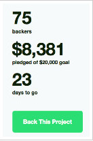 150217 - Almost Famous - Kickstarter