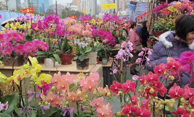 flower-market
