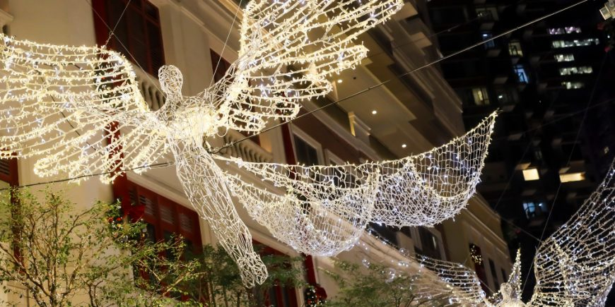 NEW The Spirit of Christmas lee gardens christmas displays lights