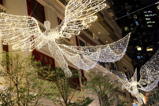 lee gardens christmas lights