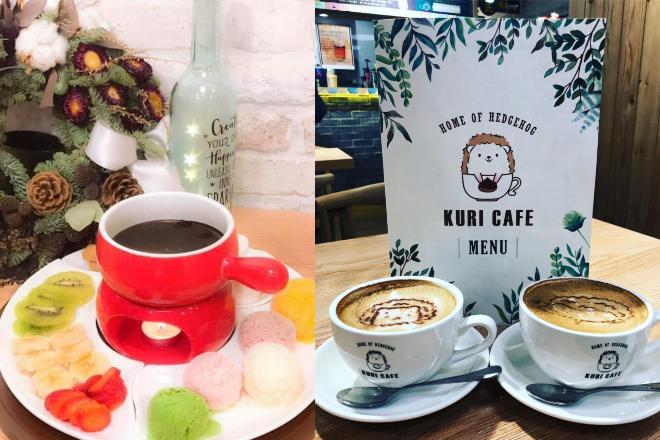 hedgehog cafe hong kong kuri cafe