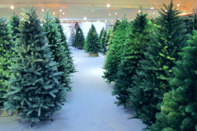 Royal Christmas trees