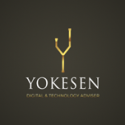 Yokesen Digital & Technology Adviser