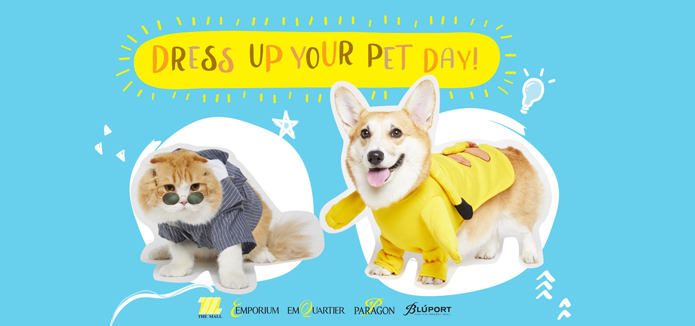 Dress Up Your Pet Day !!