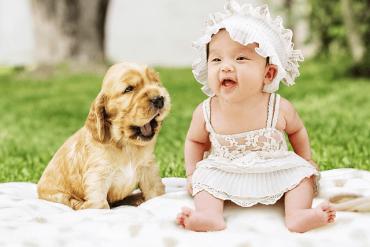 แนะนำเด็กแรกเกิดกับสัตว์เลี้ยง