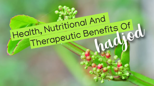 Health, Nutritional And Therapeutic Benefits Of Hadjod