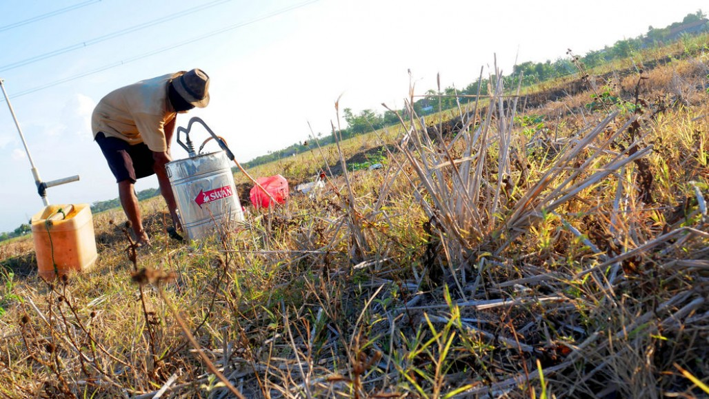 The Urgency of Waqf Well for Agricultural Lands in Bekasi' photo