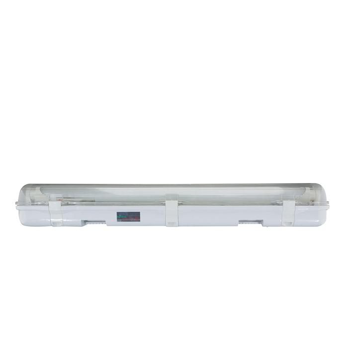 Bộ đèn LED Tuýp Chống ẩm 18W - T8 CA01/18Wx2 Rạng Đông
