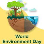 World Environment Day feature image