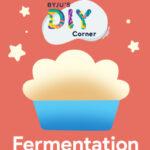 Fermentation DIY