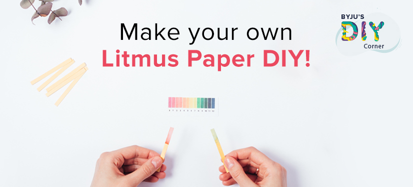 Litmus Paper DIY
