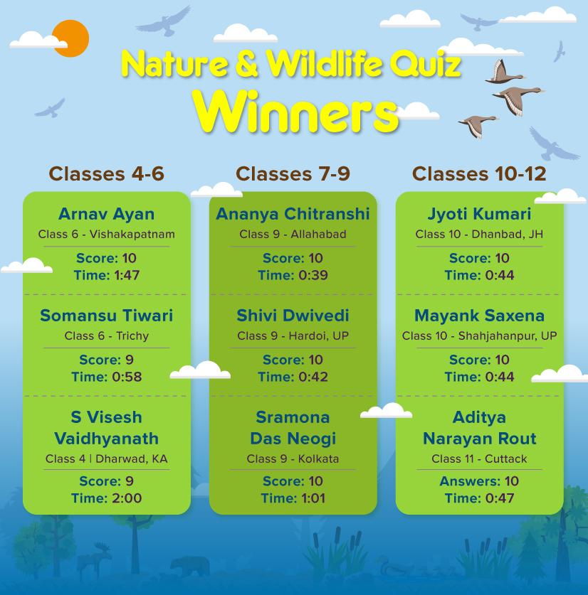 Full list of winners