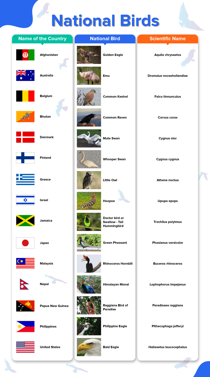 15 countries, flags and their national birds