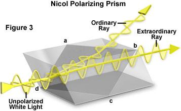 Nicole Prism