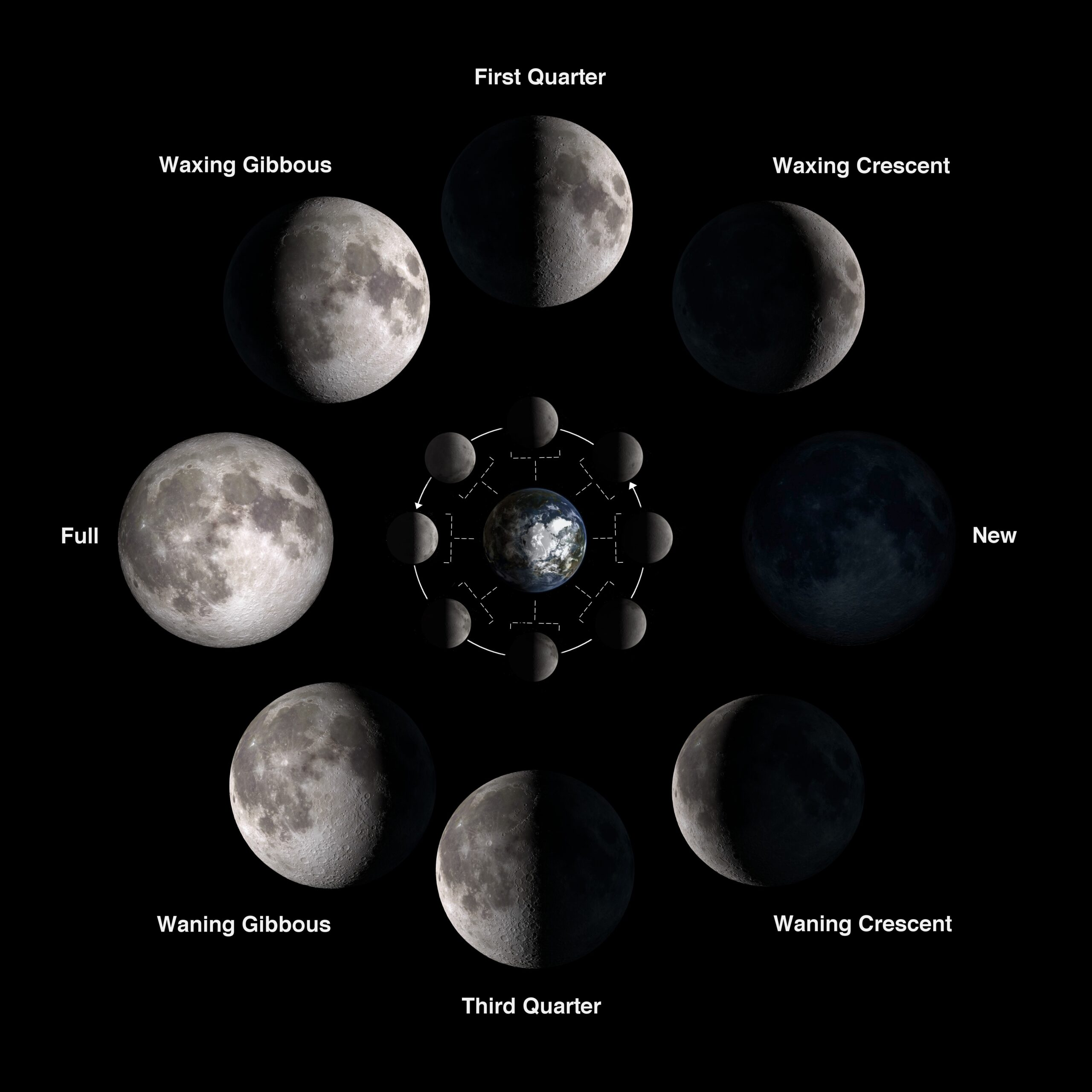 Phases of Moon. Source: NASA/Bill Dunford