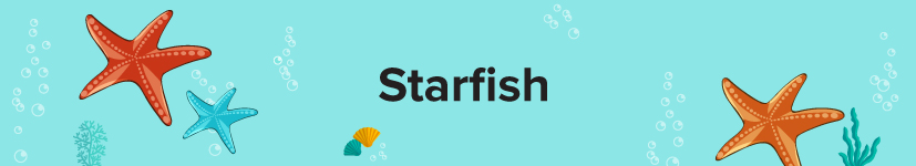 Starfish or Sea Stars and their regrowing tales