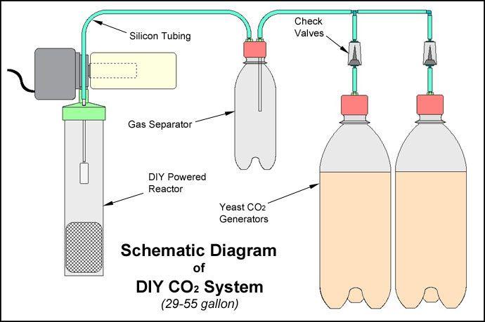 Cách tạo dụng cụ CO2 cho hồ thủy sinh tại nhà