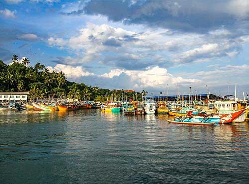 Mirssa Sri Lanka