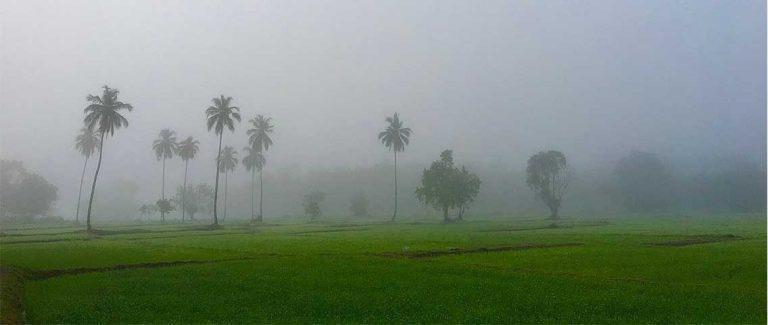 Kandy Sri Lanka Feature