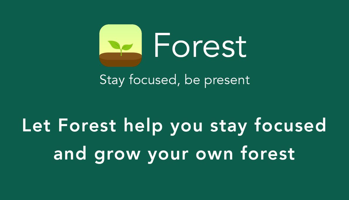 Be rewarded with a tree for every time you focus