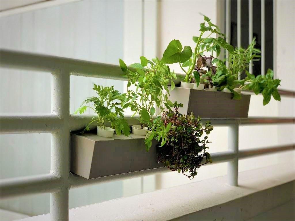 Corridor balcony - THE EDGE SINGAPORE