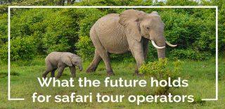safari tour operator